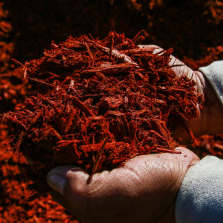 Handful of Red Dyed Mulch