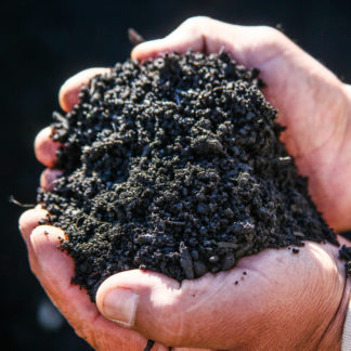 Handful of Pulverized Topsoil