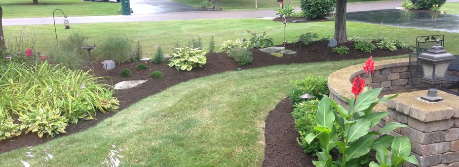Mulch Landscaping Picture
