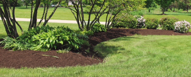 Free Mulch with Purchase